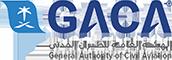 Saudi Private Aviation